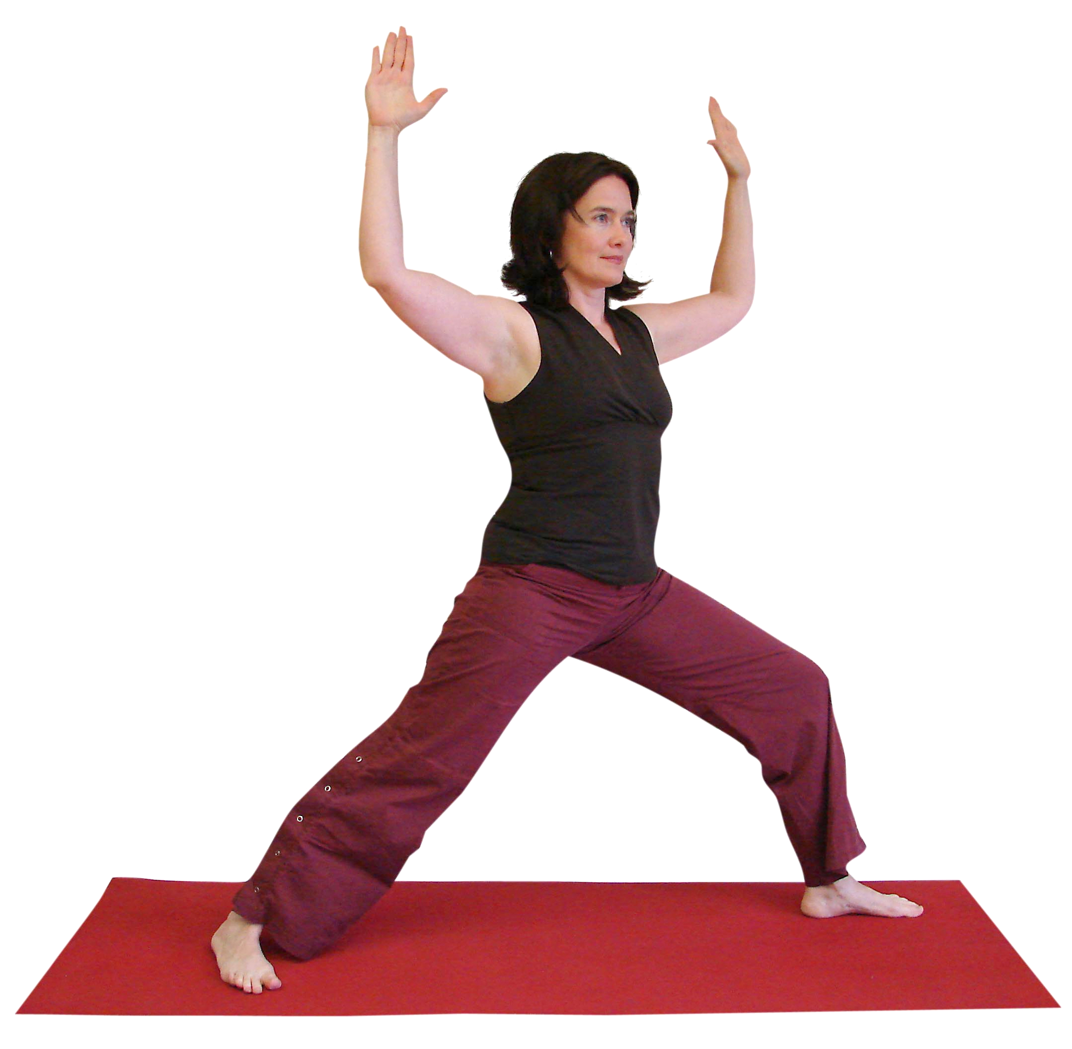 Somayoga Therapy What Is It Yoga North Duluth