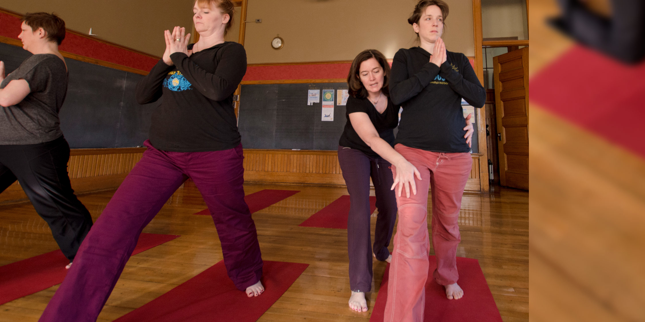 Yoga North ISYI SOMAYOGA APPROACH TO CLASSIC ASANA COURSE